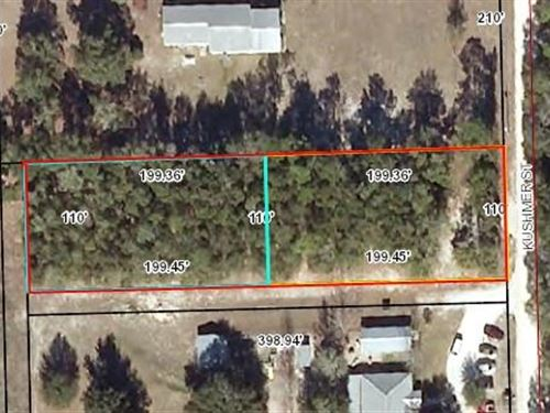 Paved Road, Close to Town Schools : Bell : Gilchrist County : Florida