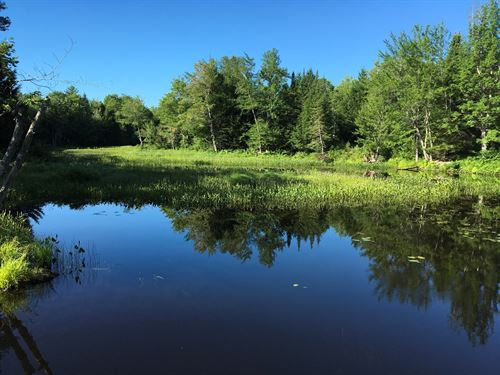 River Property, Howland, Maine : Howland : Penobscot County : Maine