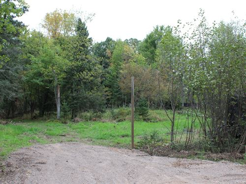 101 Acres Prime Recreational Land : Gilman : Taylor County : Wisconsin