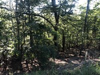 Bank Owned, Private Lot Gated Comm : Jasper : Pickens County : Georgia