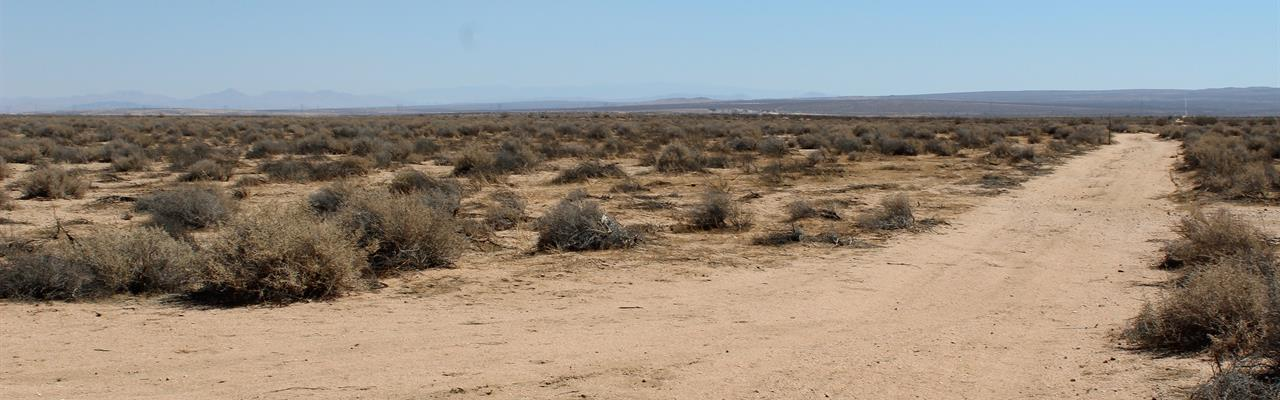 20 Acres Of Man Land : Kramer Junction : San Bernardino County : California