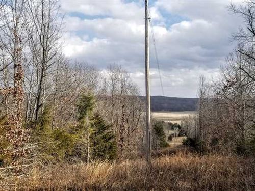 For Sale 40 Acres Recreational : Cabool : Texas County : Missouri
