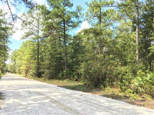 6 Acre Home Site For Sale in Kings : Kingsland : Camden County : Georgia