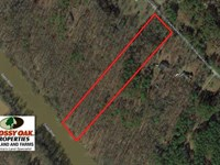 5.13 Acres of River Front Timber : Moncure : Chatham County : North Carolina