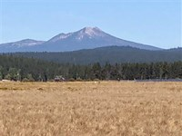 5 Beautiful Acres on The Famed Wil : Chiloquin : Klamath County : Oregon