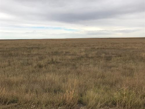 Lincoln County Crp Farmland : Arriba : Lincoln County : Colorado