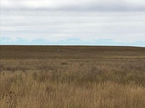 Crp Farmland Lincoln County : Arriba : Lincoln County : Colorado