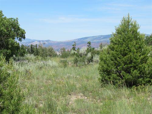 41 Acres Eagle County Surrounded : Gypsum : Garfield County : Colorado