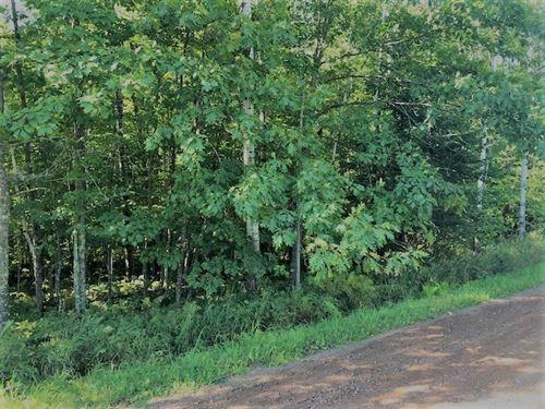 20 Acres Land, Sturgeon Lake, High : Sturgeon Lake : Pine County : Minnesota