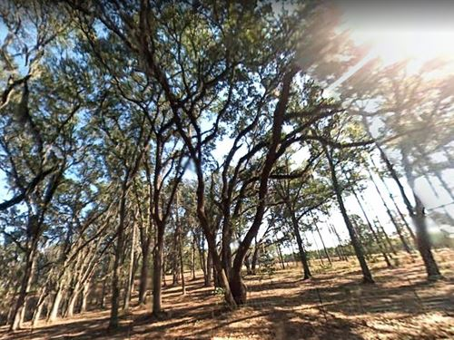 Suwannee County, Fl $32,000 : Live Oak : Suwannee County : Florida