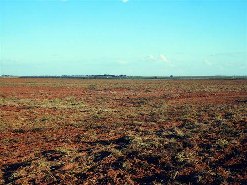 Very Productive Farmland : Thomas : Custer County : Oklahoma