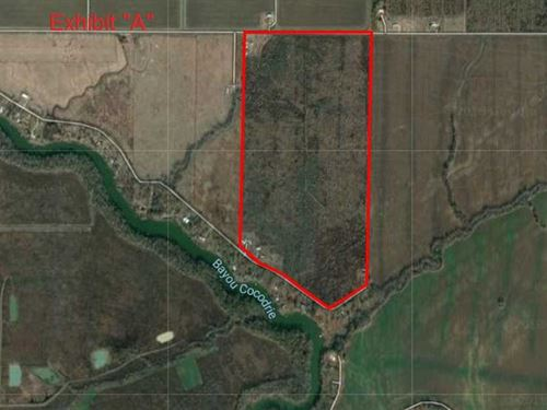 149 Acres Recreational, Timber : Monterey : Concordia Parish : Louisiana