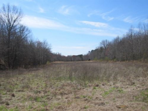 38.7 Acres In Prentiss County In Bo : Booneville : Prentiss County : Mississippi