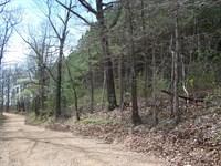 Arkansas Hunting & Recreational : Harriet : Searcy County : Arkansas