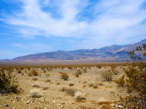 Near La County, Seasonal Stream : Hi Vista : San Bernardino County : California