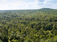798 Acres On Tennessee's Cumberland : Lancing : Morgan County : Tennessee