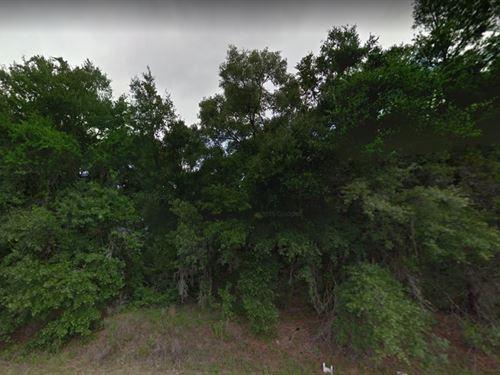 Putnam County, Fl $17,500 : Satsuma : Putnam County : Georgia