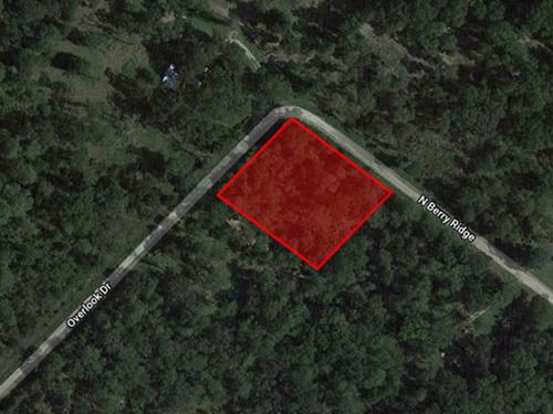 1 Acre Unrestricted Lot : Caldwell : Burleson County : Texas