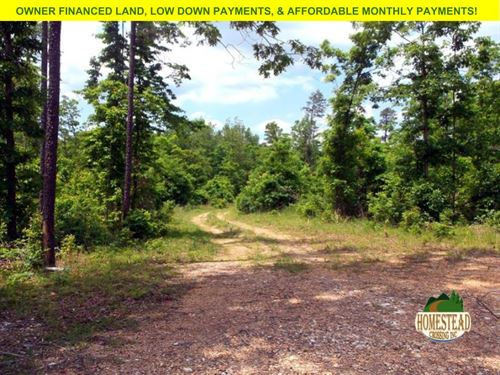 Large Parcel Near Pioneer Forest : Raymondville : Texas County : Missouri