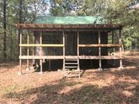 Arkansas Hunting Cabin on 1 Acre : Lynn : Lawrence County : Arkansas