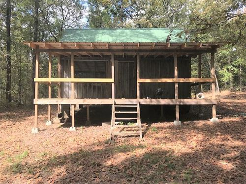 Arkansas Hunting Cabin on 1 Acre : Lynn : Lawrence County : Arkansas