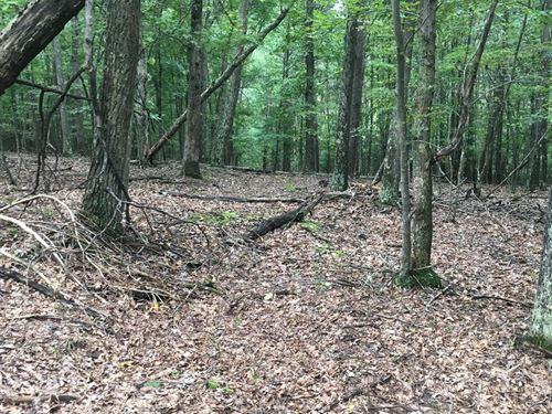 Recreation Land For Sale : Flintstone : Allegany County : Maryland