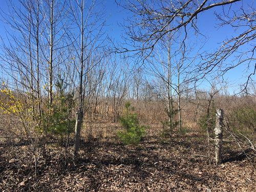 65 Acres For Sale, Burkesville, KY : Burkesville : Cumberland County : Kentucky