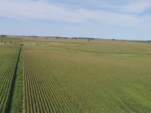 320 Crop Land Acres Deuel County : Brookings : South Dakota