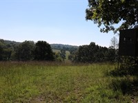 Large Vacant Tract Melbourne : Melbourne : Izard County : Arkansas