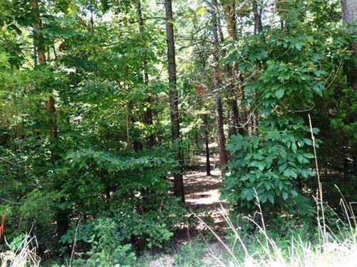 21.1 Acres Wooded Land Mountain : Mountain View : Stone County : Arkansas