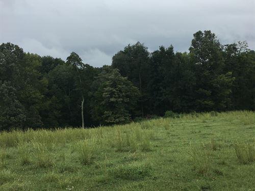 Kentucky, Farm, Timber, Green : Hardyville : Green County : Kentucky