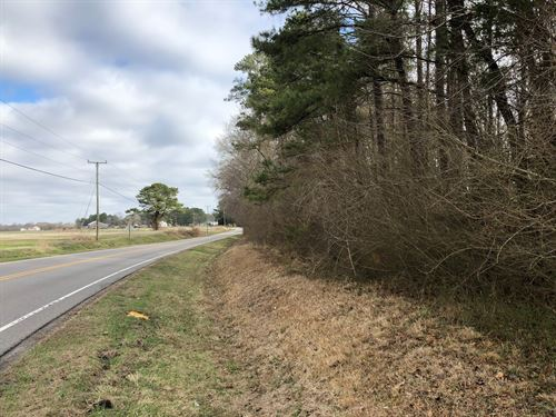 Martin County Buildable Lot : Jamesville : Martin County : North Carolina