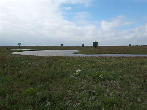 Waterfowl Dream Property : Windom : McPherson County : Kansas