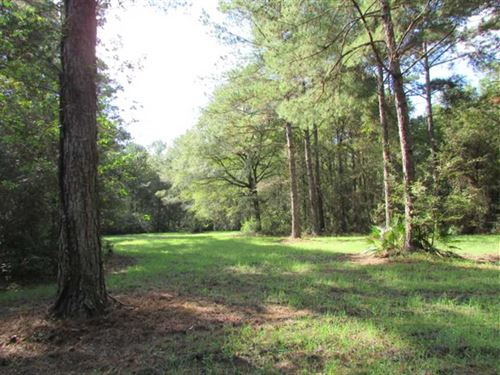 82 Acres of Excellent Hunting Land : Moultrie : Colquitt County : Georgia
