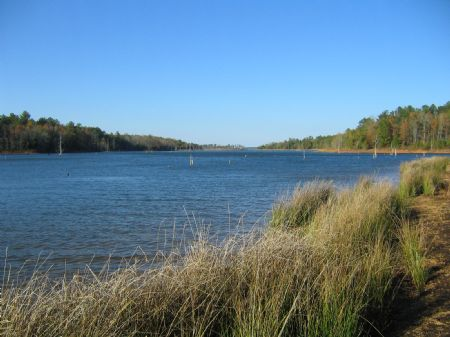 Pristine Lake Russell : Elberton : Elbert County : Georgia
