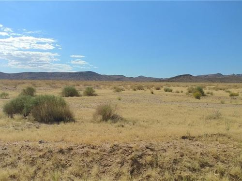 38.18 Acres Nice Flat Land Mountain : Kingman : Mohave County : Arizona