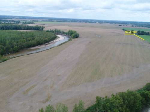 146 Acres Grand River Bottom, 4 : Pattonsburg : Daviess County : Missouri