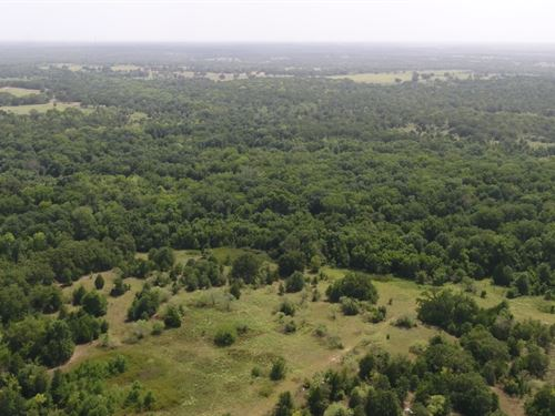Secluded 24.227 Acres : Milano : Milam County : Texas