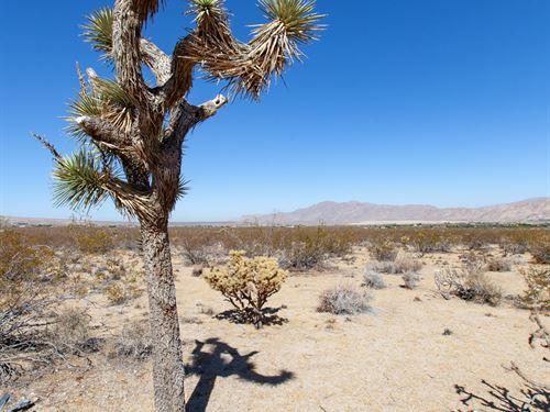 5 Acres Of California High Desert : Lucerne Valley : San Bernardino County : California