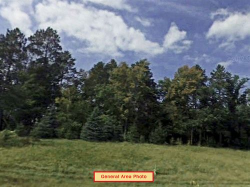 Nearly Half Acre Lot Near Fawn Lake : Browerville : Todd County : Minnesota