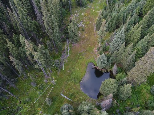 Prospectors Paradise : Philipsburg : Granite County : Montana