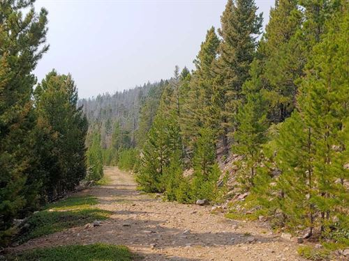 Remote Mountain Top Retreat : Wolf Creek : Lewis And Clark County : Montana