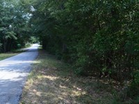 4 Wooded Acres Near Lake Hartwe : Anderson : South Carolina