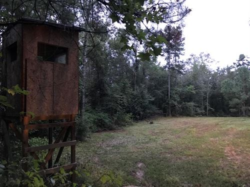 19.34 Acres : Brookhaven : Lincoln County : Mississippi