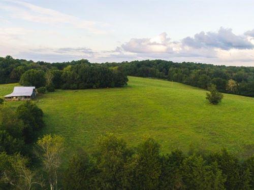 Large Acreage Farm Auction : Appomattox : Virginia