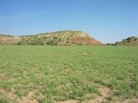 Secluded Northern Arizona Ranch : Saint Johns : Apache County : Arizona
