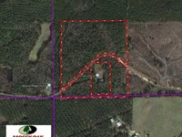 30.6 Acre Hunting, Recreational an : Shuqualak : Noxubee County : Mississippi