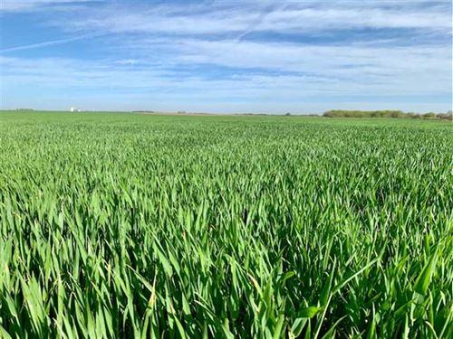 Price Reduced, 78 Acres of Dryl : Stafford : Kansas