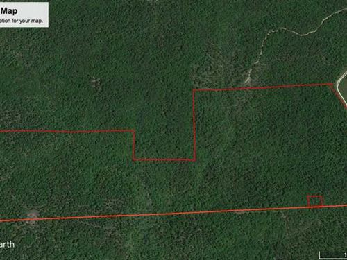 308 Acres For Sale in Ripley Count : Doniphan : Ripley County : Missouri
