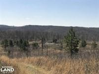 156 Acres Deer & Turkey Hunting : Rupert : Van Buren County : Arkansas